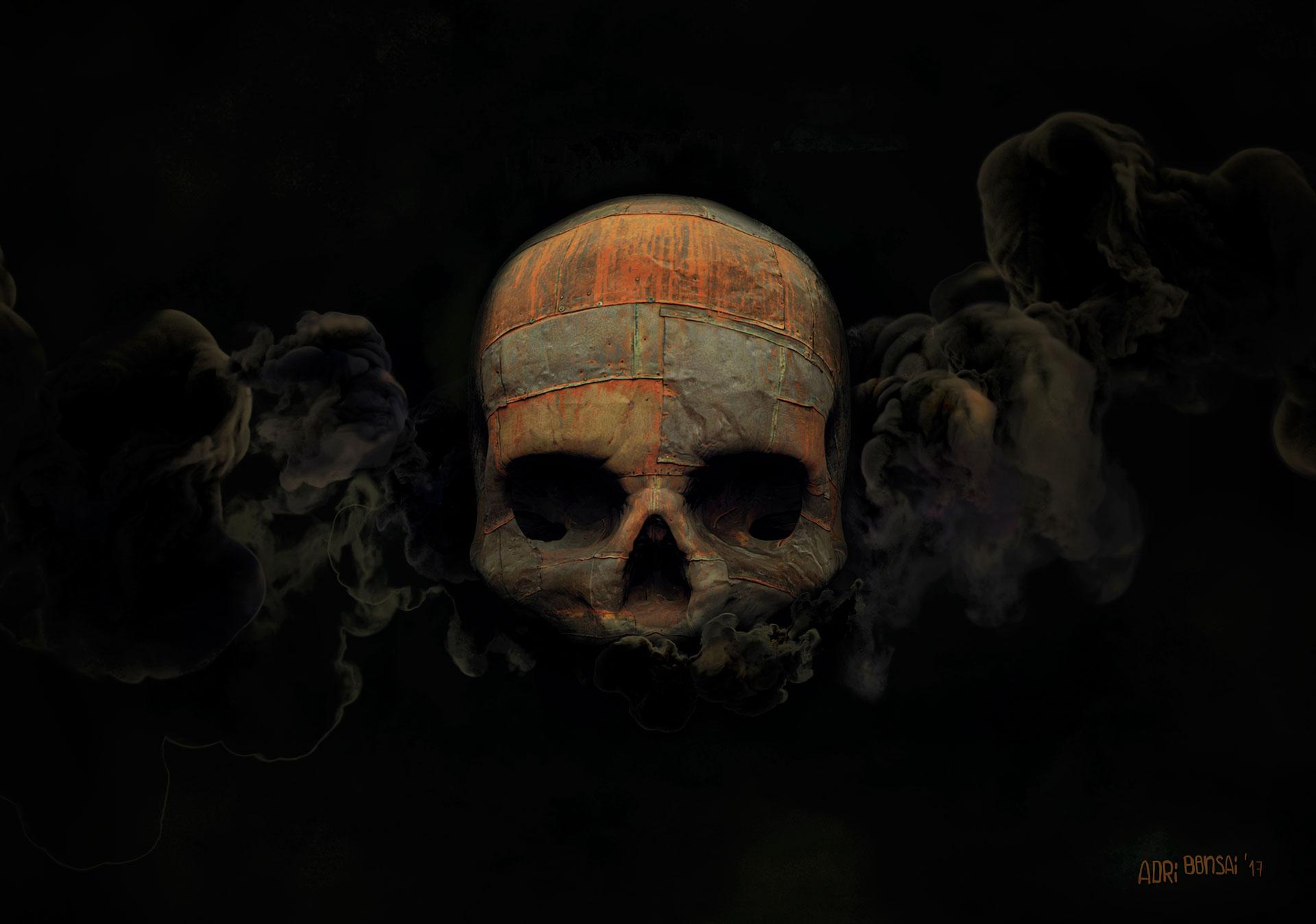 Vandal's skull